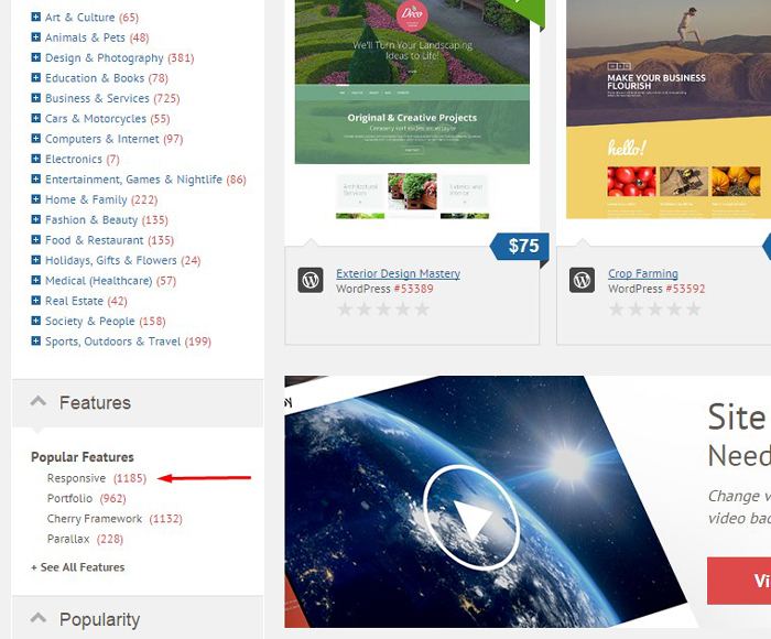 2015 05 05 tex 12 Темы и их установка для wordpress