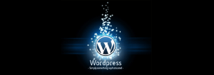 wordpress logo 300x106 Как выбрать хостинг провайдер для wordpress