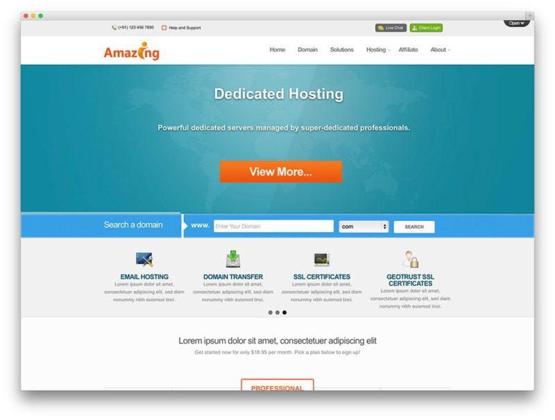 wp hosting 13 800x606 Лучшие темы и хостинг для Wordpress