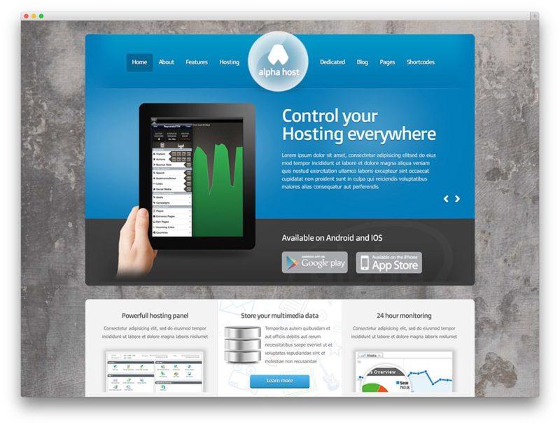 wp hosting 6 800x610 Лучшие темы и хостинг для Wordpress