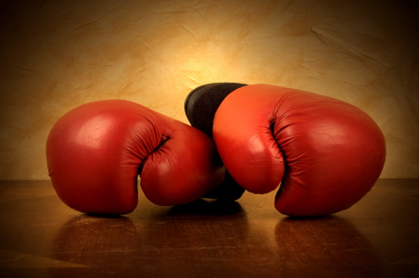 1333016709 boxing gloves Как попасть в хостинг сайтов рейтинг?