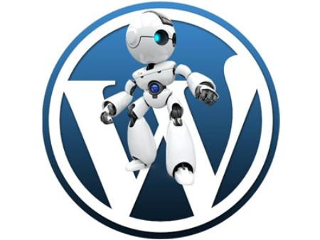 Хостинг WordPress: как ускорить работу сайта на этой CMS
