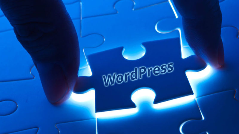xHosting A Beginner s Guide to WordPress Plugins.jpg.pagespeed.ic .dRDLvSdOqx 800x450 WordPress хостинг: чистый переезд сайта