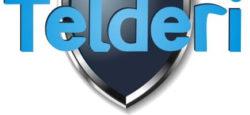 Обзор портала: как продать сайт через Telderi