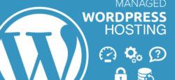 Как выбрать оптимальный хостинг для WordPress